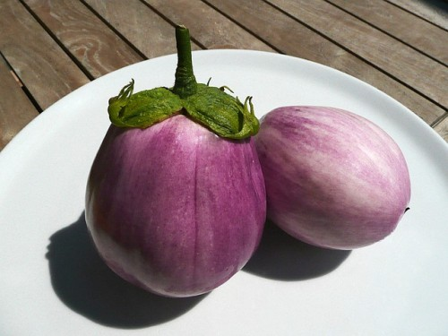 melanzane in pastella